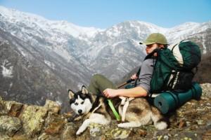 chien-rando-montagne