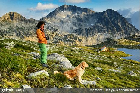 Nos conseils pour préparer une randonnée avec son chien