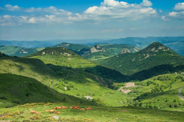 Paysage de l'Auvergne